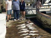 Carolina Girl Sportfishing Charters Outer Banks, Tile fish & Mahi