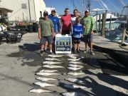 Carolina Girl Sportfishing Charters Outer Banks, Weekly Fishing Report
