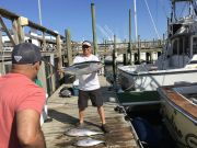 Carolina Girl Sportfishing Charters Outer Banks, Fishing Report