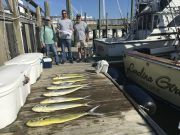 Carolina Girl Sportfishing Charters Outer Banks, Blue Marlin ! & Mahi