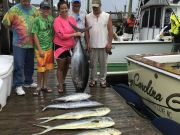 Carolina Girl Sportfishing Charters Outer Banks, Great Fishing & No Sharks Today